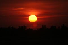 Sunset (ahhyeah) Tags: sunset sky sun clouds horizon iowa ia ankeny fcsetsrises