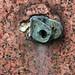 link and granite