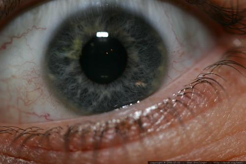 sean's eyeball - _MG_7188