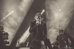 HFT (DelFalko) Tags: christopher hubert felix concert thiefaine nantes festival musique fender board alice hft botté lucas thiéfaine