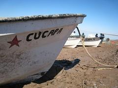 Cucapa boat