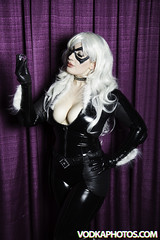 IMG_7047 (BlackMesaNorth) Tags: blackcat texas cosplay houston bellechere 2015 comicpalooza