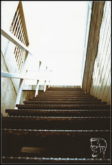 STAIRWAY TO KNOWLEDGE (ThiefofMoments) Tags: analogico cursofotografia