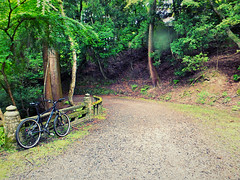 Riding Up Mount Wakakusa, Nara, Japan. (kinkicycle.com) Tags: mountain rain bicycle japan japanese cycling fuji bikes bicycles mtb nara wakakusa lovenara