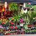 Carretera Tamazunchale a Cd Valles (flores y helados) - SLP México 150219 182223 02279 HX50V