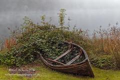 Ard Boat (4) (Shuggie!!) Tags: boathouses boats brambles hdr landscape lochard mistandfog morninglight reeds scotland trossachs zenfolio karl williams karlwilliams