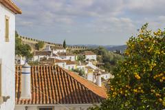 _MG_9248 (Arthur Pontes) Tags: óbidos medieval laranjas orange age old history mar vila