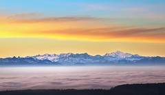 Taking a Revenge on the Sea of Fog – Massif du Mont-Blanc - Switzerland (Rogg4n) Tags: vuedesalpes mountain montagne sunrise dawn rain color switzerland neuchâtel panorama goldenhours sky clouds landscape alps canoneos80d sigma50100mmf18dchsm morning autumn fall peak snow sumit europe mounts valley swiss landmark outdoor suisse schweiz light landschaft wonderland nature dreamscape paysage montblanc massifdumontblanc hautsgeneveys fog seaoffog france