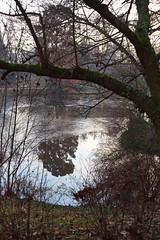 WI Kurpark 3 (===\WR\===) Tags: deutschland germany hessen wiesbaden kurpark teich winter