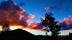 Sunset (Sonia Sardinha) Tags: sunset clouds sky blue red pink trees