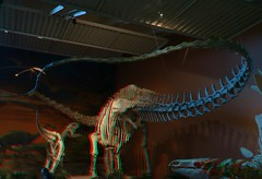 Albuquerue Natural History Museum in Anaglyph 3d (CaptDanger) Tags: 3d 3dimensional images 3dglasses 3dimage 3dpicture 3dpictures albuquerque redblue red blue nm newmexico newmexiconaturalhistorymuseum nmmnhs museum dinosaur dino dinosaurin3d abq abqmuseum abqoldtown oldtown oldtownalbuquerque anaglyph anaglyph3d canonphotography southwesternus americansouthwest america eosm3