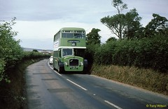15 SVOC 562 Bristol LD6G ECW Near Wroxall July76 (Copy) (focus- transport) Tags: isleofwight iow steamship londonundergroundtube tubetrain southernvectis vectis fountaincoaches buses coaches opentoppers bristol k mw re vr sul easterncoachworks ecw marshall ld lodekka lh lhs bedford ymt ymq duple plaxton sb brush nbc srn6 hovercraft national bus company ryde newport sandown shanklin yarmouth freshwater luccombe ventnor