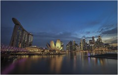 "Singapore 0019 (Fermin Ezcurdia) Tags: singapur singapore ""sudeste asiático"" skyline ""marina bay sands"" ""maryba bay"" chinatown ""barrio indio"" barrio musulman"" ""bufaflo road"" ""clarke quay"" ""orchard ""garden by ""sultan mosque"" ""kuala lumpu"" malasia ""torres petronas"" ""lake garde"" ""petaling street"" ""jalan petaling"" alor"" ""little india"" ""bukit bintang"" ""sri mahamariammam"" ""guan di"" ""kl tower"" menara"