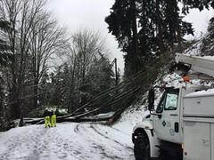 PSE crew/tree at 4800 east mercer way (Puget Sound Energy) Tags: snow snowy snowstorm crews pugetsoundenergy pse power poweroutage mercer way