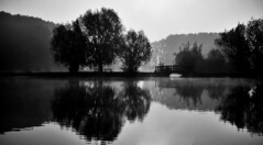 Willems. (julien ( l'ours )) Tags: willems black white blanc france brume lumix dmc fz 50 6 bonniers base loisir noir etang lac eau calme paysage nord panasonic zen landscape reflect reflets
