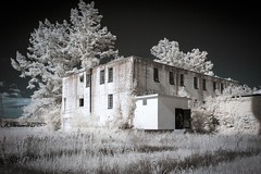 Infrared Landscape (Notley) Tags: sky june rural canon landscape spring bluesky missouri infrared callawaycounty 2015 10thavenue universityofmissouri notley irconversion infraredconversion notleyhawkins callawaycountymissouri missouriphotography httpwwwnotleyhawkinscom notleyhawkinsphotography renzprisonfarm