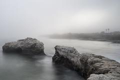 Vanishing Bridges (eCHstigma) Tags: ocean california longexposure santacruz beach birds zeiss nikon waves bayarea d750 naturalbridges distagon stateparks 10stop 25mmf2 leebigstopper distagont225 nikond750