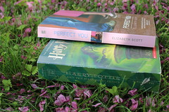 two books (kelrosee) Tags: flowers nature reading book reader reads harrypotter read novel bookish twobooks bookphotography