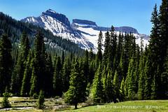 OWL CREEK PASS (Aspenbreeze) Tags: trees mountains eh rural colorado stream pines mountainside peaks snowypeaks coloradolandscape owlcreekpass coloradocountryside aspenbreeze snowonpeaks moonandbackphotography bevzuerlein