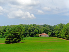 On a summer's day (Whatknot) Tags: mississippi countryside tupelo 2015 whatknot