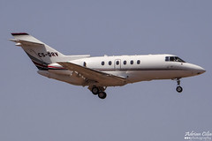NetJets --- Raytheon Hawker 800XP --- CS-DRV (Drinu C) Tags: plane aircraft aviation sony raytheon dsc hawker mla netjets bizjet privatejet 800xp lmml csdrv hx100v adrianciliaphotography