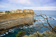 Another view of razor back, behind some dry branches (PsJeremy) Tags: rock water branches sea oceans monoliths shipwreck coast lochardgorge razorback greatoceanroad abctv weather victoriaparklands ruggedcoast sony