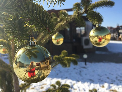 What a great winter day... Christmas Tree Christmas Tree Sphere Christmas Decoration Christmas Ornament Reflection Focus On Foreground Close-up Hanging No People Celebration Bauble Christmas Bauble Tradition Outdoors Day