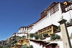 aR_TIBET_06 (Arnaud Rossocelo) Tags: tibet tibetan monk lhassa dalai lama potala stupa monastery temple buddha buddhism statue shigatse lake namtso yamdrok everest