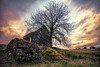 Long Forgotten  (County Antrim) (Perkvats Havatkov) Tags: eosm abandoned derelict cottage tree clouds