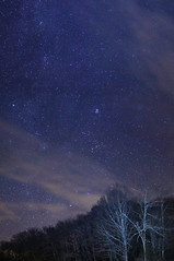 Taurus Rising (iksose7) Tags: astrophotography astronomy nightskyphotography nature stars space sky canon constellations cluster pleiades clouds trees planets venus 1100d 1855mm m