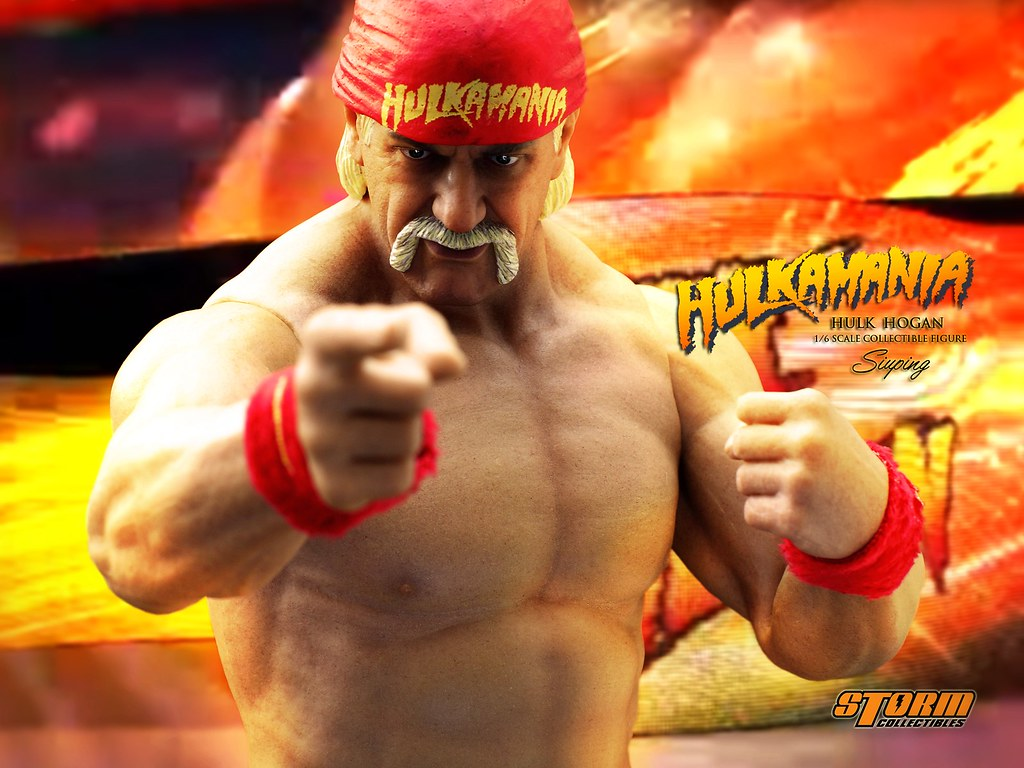 Hulk hogan back in the ring-2934