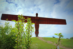 Angel of the North (Tony Worrall) Tags: england northern uk update place location north visit area county attraction open stream tour country welovethenorth sculpture statue rusty tall made giant washinton newcastle northeast east angelofthenorth angel 1 antonygormley art publicart arty