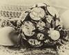 Grandma Simon's hat pin (pattyg24) Tags: 2017 crochet tamron90mmmacro hatpin macro pearl rhinestones