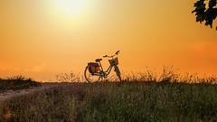 Sonnenuntergang mit Fahrrad.jpg (Knipser31405) Tags: frühjahr schlei sonnenuntergang 2016 schleimünde maasholm angeln