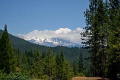 070809-002F (kzzzkc) Tags: nikon d200 usa california shastasprings interstate5 i5 mountain forest tree cloud green