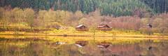Log Cabins (Brian Travelling) Tags: log cabin logcabin reflection lochlubnaig strathyreforest trossachs scotland