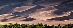 Journey To The Top (Angles & Edges) Tags: greatsanddunesnationalpark greatsanddunes dunes sand colorado nationalpark sangredecristo sunset shadow martinwitt anglesedges greatphotographers perfectphoto awesomephotograph colorful happy sunlight sun brown trail camp travel hike hiking desert