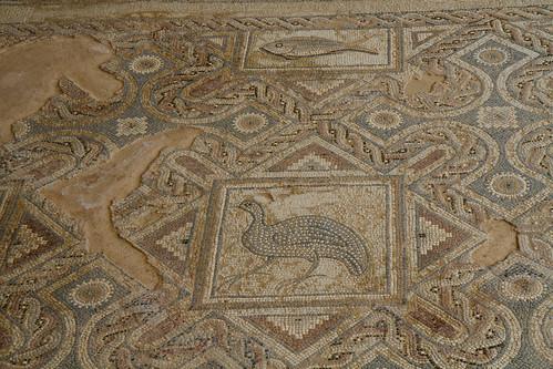 Eustolios House, Kourion