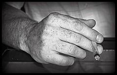 mains de labeur et de douceur... Reynald ARTAUD (Reynald ARTAUD) Tags: yahoo juin google mains artaud douceur landes reynald 2015 labeur