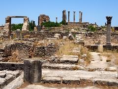 P5261306 (lnewman333) Tags: africa ancient northafrica historic worldheritagesite morocco fez maroc maghreb column fes volubilis romanruins unescosite 1stcenturyad