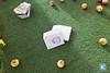 20150628_ND_Kapell-Etagi-12 (СубКульт) Tags: roof спектакль крыша subcult капель этажи etagi субкультура гребенщикова nataliadubovik натальядубовик алисагребенщикова