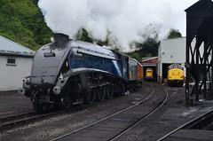 DSC_3736 (82A Photography) Tags: heritage set diesel yorkshire north platform engine railway class steam whitby service moors locomotive 20 37 standard a4 tender teak pickering goathland levisham 4mt grosmont nymr lner q6 20142 76079 60007 75029 37264