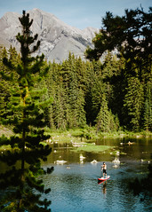 David Postman // Banff (DEARTH !) Tags: ca canada man male beard outside nationalpark outdoor lifestyle alberta banff wilderness alpinelake sup dearth johnsonlake standuppaddleboarding improvementdistrictno9 davidpostman