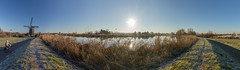 Frosty Morning (hanneketravels) Tags: rotterdam cyclist netherlands winter river frost nederland windmill panorama sun cycling cold