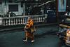 La Siguiente Jornada (JavierAndrés) Tags: tailandia thailand hombre man anciano old viejo calle street candid retrato portrait naranja orange toga ropa clothes monje monk robe color tránsito transit traffic contraste contrast diario newspaper periódico caminando walking descalso barefoot ciudad city urbano urban religión religion persona person pies feet bangkok viajar travel trip viaje asia sudesteasiático southeastasia 50mm nikon nikkor d800