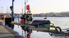 Frischer Fisch (petra.foto busy busy busy) Tags: fotopetra canon 5dmarkiii travemünde fischkutter fisch fischer baltic meer schiffe pfütze spiegelung germany schleswigholstein ostsee