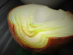 A crying shame (JulieK (thanks for 7 million views)) Tags: itsapeelingtome macromondays onion vegetable macro canonixus170 2017onephotoeachday food peel