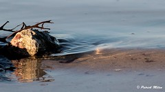 Water movement (patrick_milan) Tags: refelction colors landscape sea mer iroise water plouguin saint pabu brittany bretagne saintpabu ploudalmezeau porsall finistère saariysqualitypictures
