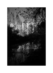 Riflessi al Metauro (1.11 - Giovanni Contarelli) Tags: fiume palazzoducale urbania marche italy river montefeltro metauro biancoenero blackandwhite bw fujifilm fujifilmxe2s xe2s