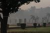 0W6A8659 (Liaqat Ali Vance) Tags: nature fogy weather lawrence garden lahore google liaqat ali vance photography punjab pakistan trees